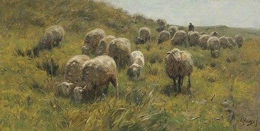 Anton Mauve - Op de duinen