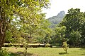Anuradhapura view.jpg