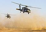 Apache and Sea Hawk joint fire exercise 140708-Z-AR422-128.jpg