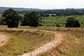 Art earthwork landscape sculpture Woodland Trust Theydon Bois Essex 02.JPG