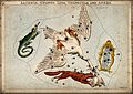 Astrology; various constellations. Coloured engraving by S. Wellcome V0024933.jpg