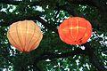 Auckland Lantern Festival (4468836694).jpg