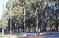 Australian Vietnam Forces National Memorial Flags.JPG
