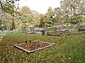 Autumn in the Churchyard of St. John the Baptist's, Kings Caple - geograph.org.uk - 600612.jpg