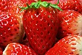 BERRY...BERRY... - Flickr - Have a nice day ^.jpg