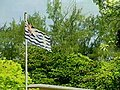 BIOT flag flying at full mast.jpg