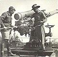 BL 4 inch Mk IX gun St Essylt 1942 AWM 023664.jpeg