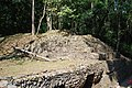 BackBuilding19Yaxchilan.JPG