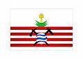 Bandeira Campo Formoso.jpg