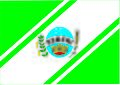 Bandeira de Seberi.jpg