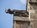 Barcelona Cathedral Strange Animal Carvings 2 (5832231609).jpg