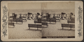 Bathing scene, Coney Island, from Robert N. Dennis collection of stereoscopic views.png