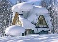 Batumi snow.jpg