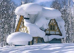 Snowfall in Batumi