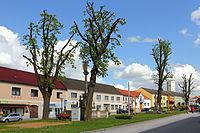 Baumgruppe in Schweiggers 04 2015-05 NDM ZT-051.jpg