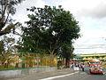 Bayombong,NuevaVizcayajf0212 08.JPG