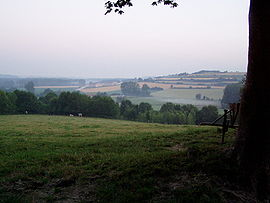 Beaurainville fields close to street Mont Blanc 20060704 France Pas de Calais Misson Didier.JPG