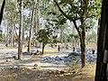 Beautiful Sightseeing in Nilagiri, Odisha 3.jpg