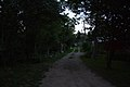 Belaya River Street (Extra Information for more, MET-3) - panoramio.jpg
