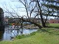 Bellefonte, PA (3458339477).jpg