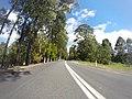 Benandarah NSW 2536, Australia - panoramio (23).jpg