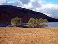 Beside Loch Ossian - geograph.org.uk - 264967.jpg