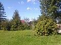 Bieczyno-bocianie gniazdo 2.jpg