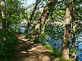 Billy Goat B Trail 4.jpg