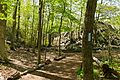 Billy Goat C Trail 0.jpg