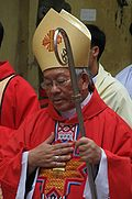 Bishop Peter Nguyen Van Nhon, Hanoi.JPG