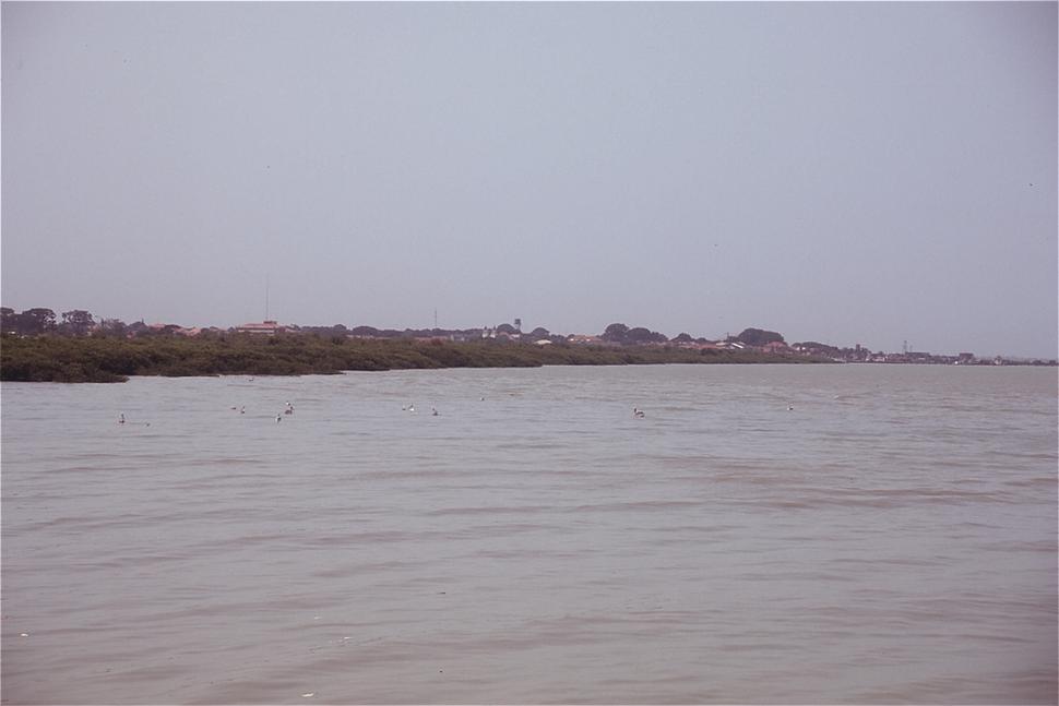 Bissau geba