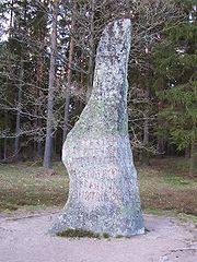 The Björketorp Runestone. It is 4.2 m tall.