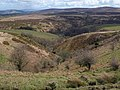 Blackford Combe - geograph.org.uk - 760531.jpg