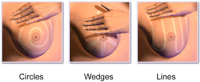 Breast self-exam - 3 methods