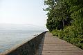 Boardwalk (1033396562).jpg