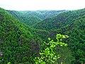 Bodetal - panoramio.jpg