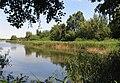 Bohdanečský rybník NR 2.jpg