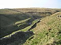 Bookil Gill - geograph.org.uk - 373473.jpg