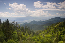 Borjomi mountains.jpg