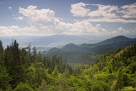 Borjomi mountains.jpg