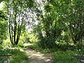 Botanischer Garten, Frankfurt am Main - DSC02670.JPG