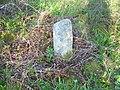 Boundary stone - geograph.org.uk - 793686.jpg