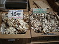 Boxes of maitake & tree oyster mushrooms.JPG