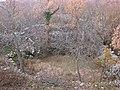 Bračević, Puhovlija - panoramio.jpg