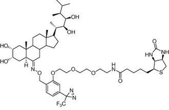 Diazirine - Image: Brassinosteroid diazirine analog