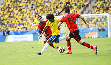 Brazil and Mexico match at the FIFA World Cup 2014-06-17 (20).jpg