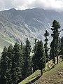 Breathtaking beauty of Pakistan's northern areas 04.jpg