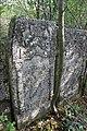 Briceni Jewish Cemetery 45.JPG