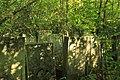 Briceni Jewish Cemetery 9.JPG