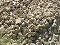 Bricks (194344274).jpg
